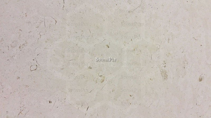 A beige and grey limestone with a fine texture.