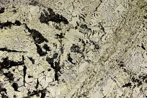 A white and cream granite with dark pattern.