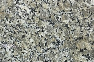 A creme and gold granite with black veining.