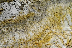 A goldish-yellow granite with cream fragments and brown veins.