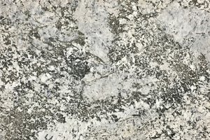 A white granite with gold variations and black veins.