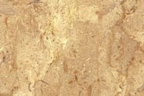 A beige and gold marble with small fossil fragments.