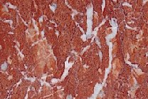 A red marble with white veins.