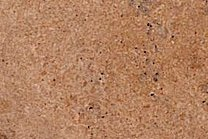 A brown-beige travertine that can feature veins.